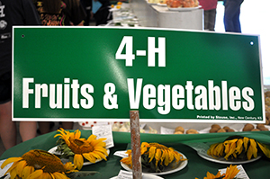 4-H Fruits & Vegetables table sign