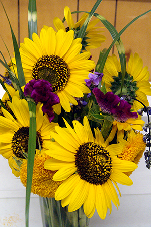 Sun flower floral display