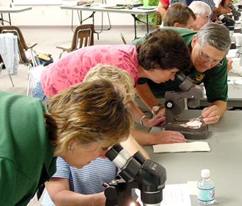 Extension Master Gardeners looking through microscopes
