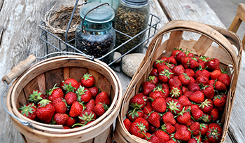 Strawberries in baskets