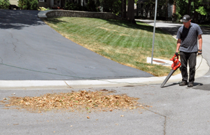 Blowing leaves with leaf blower out of the street
