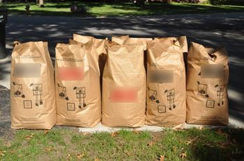 Yard waste paper bags at the street curb
