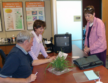 Extension Master Gardeners assist a customer with quackbush question.