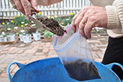 Scooping soil into a plastic bag for a soil sample